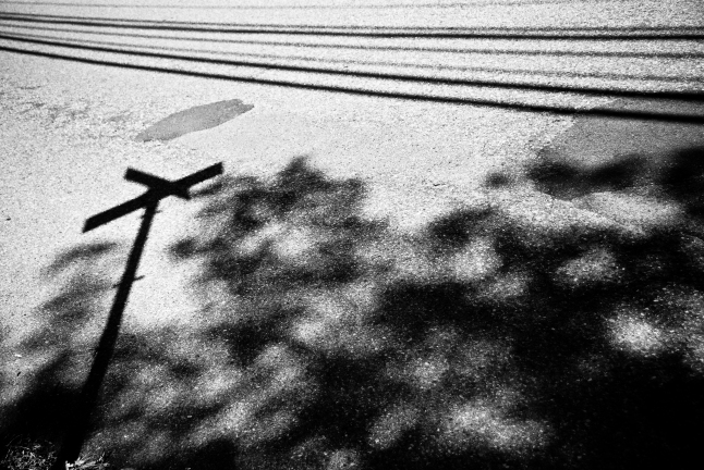 Mark Zastrow | signs and lines